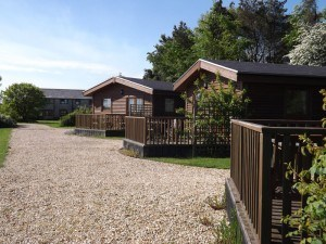 Lodges-in-the-south